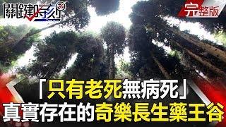 關鍵時刻 20190204節目播出版(有字幕)【精選集】