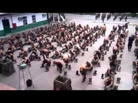 Pqdt - Entrega do boot marrom 15/1 25°BI PQDT