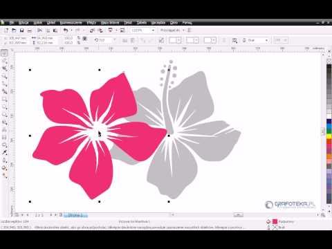 CorelDRAW X4 Tutorial PL: Wektorowy hibiskus. Część 1.