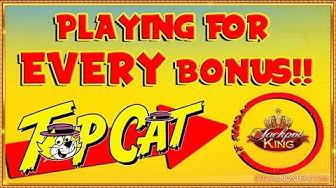 😺 Online Top Cat Challenge & TOP LEVEL JACKPOT KING!!