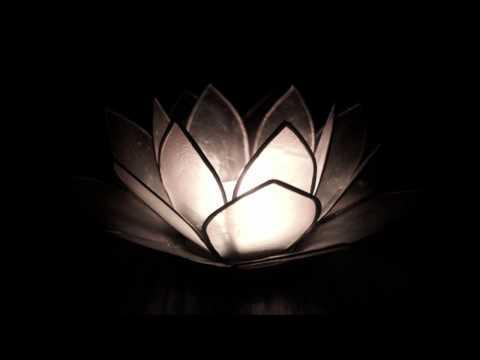 Radiohead - Lotus Flower (Lank 'Space...