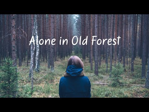Alone in Old Forest | Beautiful Chill Mix