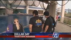 "Exxon Mobil sponsoring Texas State Aquarium's ""Dollar Day"" this weekend"