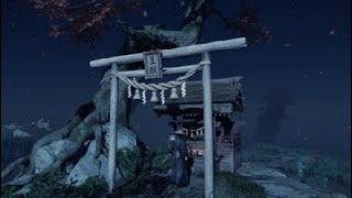峰 神社 風