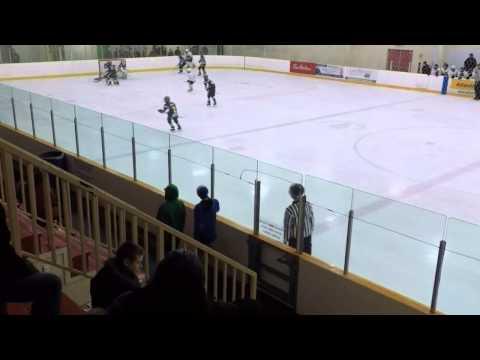 Whalers vs Chebucto Jan 25 2014