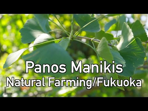 daywalker - Natural Farming Interview Panos Manikis FULL (e_15)