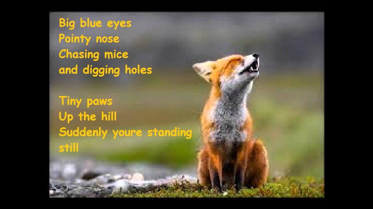 what does the fox saysylvis letralyrics youtube