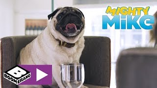 Mighty Mike | First Mates - Diner For Dogs | Boome...