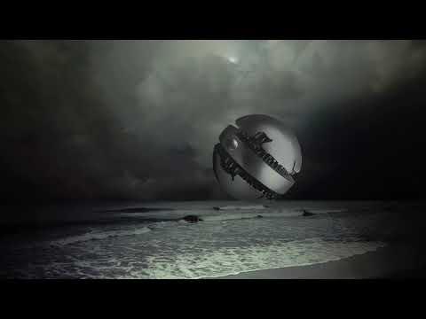Jos D'Almeida - Among Dolphins