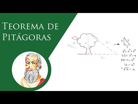 teorema-de-pitágoras-|-baldor