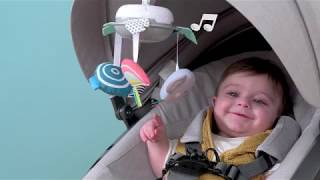 Video: Taf Toys Koaala riputatav karussell