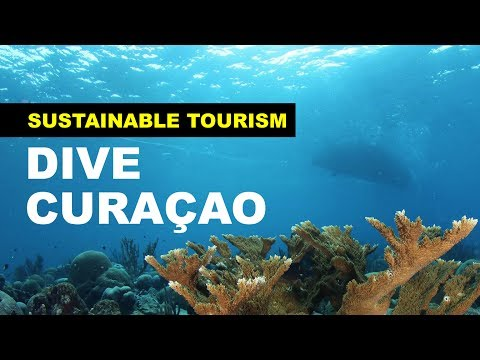 Sustainable Tourism - Dive Curacao - REAL TALK