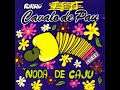 Download Forró Cavalo De Pau (Vol.02) Noda De Caju [1995] MP3 song and Music Video