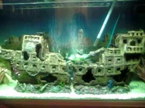 My tropical fish tank galleon ship youtube for Fish tank pirate ship