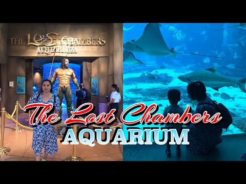 Vlog#03: The Lost Chambers Aquarium | Ruby Mingazieva