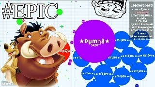 Agar.io TIMON And PUMBA (Part 3) / Server  Disappointed Us