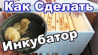 Как Сделать Инкубатор Для Вывода Цыплят