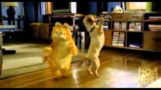 Garfield (2004) - trailer