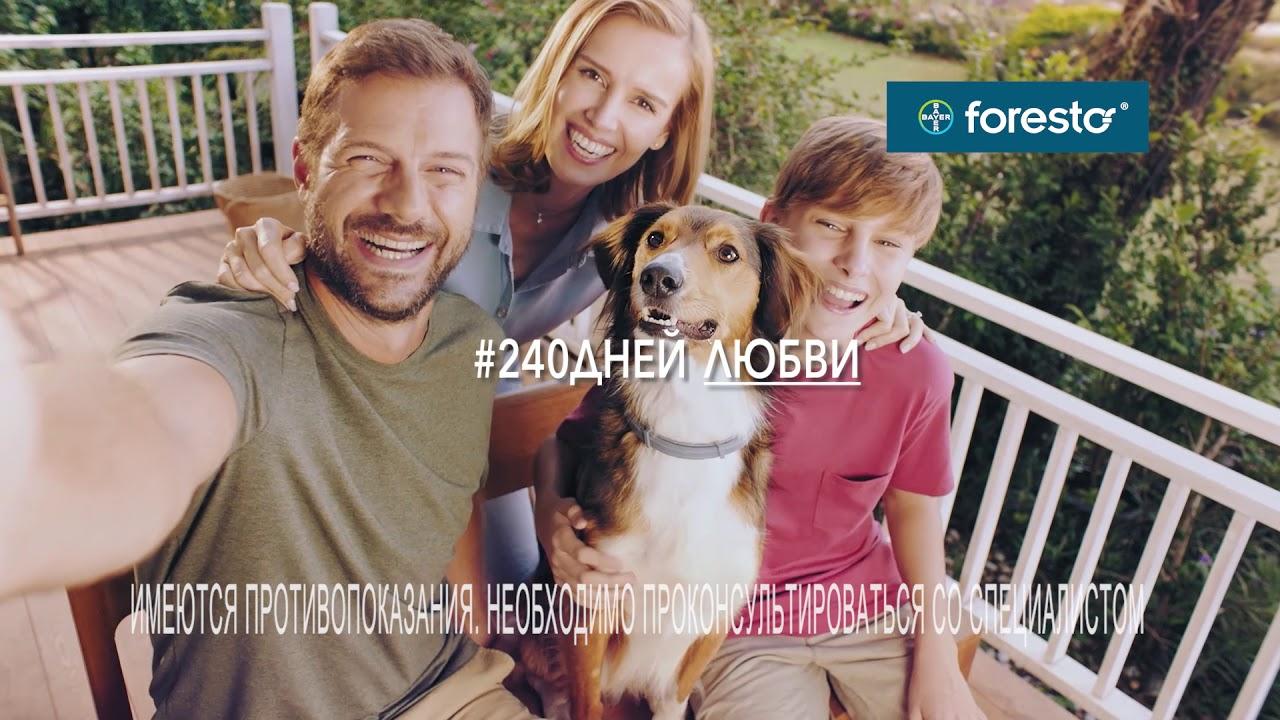 BAYER. Ошейник Foresto для собак. Рекламный ролик.