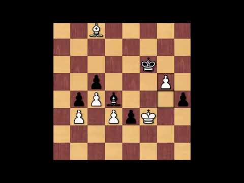 Viktor Bologan vs Alexander Moiseenko 2004 FIDE World Championship Tournament
