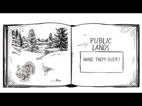 Scrubbing out public land transfer myths