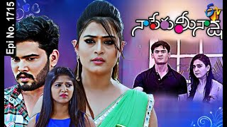 Naa Peru Meenakshi | 23rd February 2021 | Full Episode No 1715 | ETV Telugu
