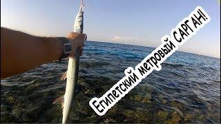 Рыбалка на Красном море в Египте с берега Часть 3 Fishing on THE Red sea in Egypt Part 3