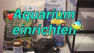 Aquarium einrichten   Sylvie Angelique