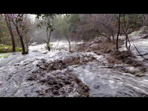 Lewis Creek 03 22 18