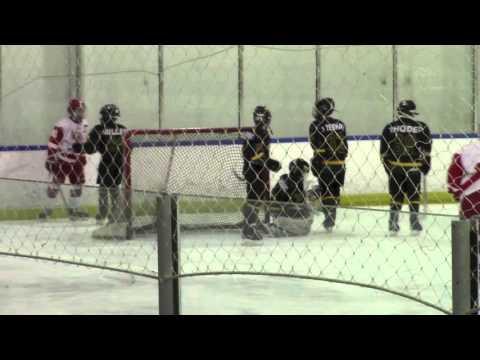 G5 Championship Full Game Red Wings vs Nj Stars B1 March 13 2016