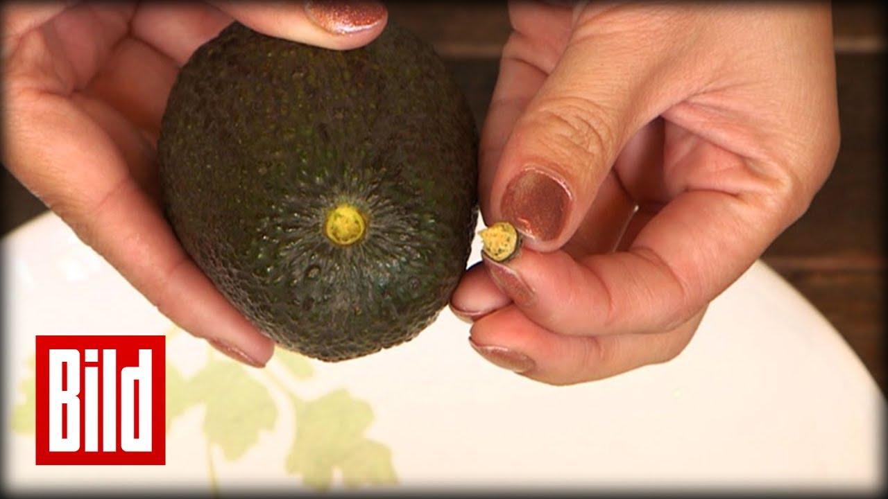 Reife Avocado So Machen Sie Es Richtig Youtube
