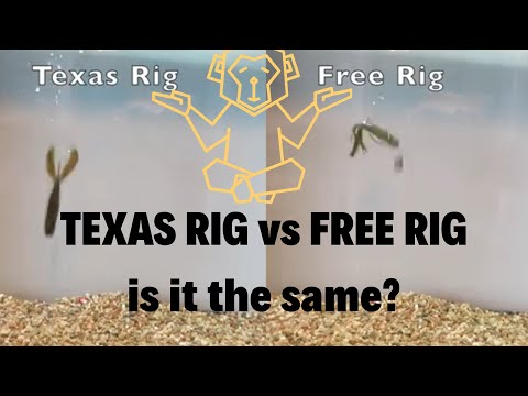 Free Rig vs Texas Rig UNDERWATER TEST