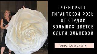 Розыгрыш гигантской розы между участницами мастер-класса Ольги Ольневой