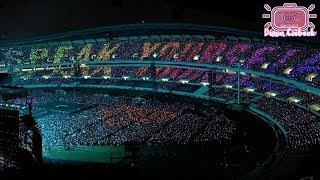 Beautiful ARMY BOMB BTS Concerts Love Yourself : Speak Yourself