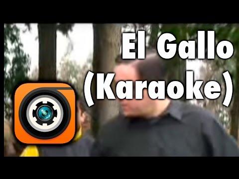 El Gallo - Karaoke Los Gatos Negros