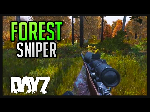 DAYZ .61 GAMEPLAY - FOREST SNIPER
