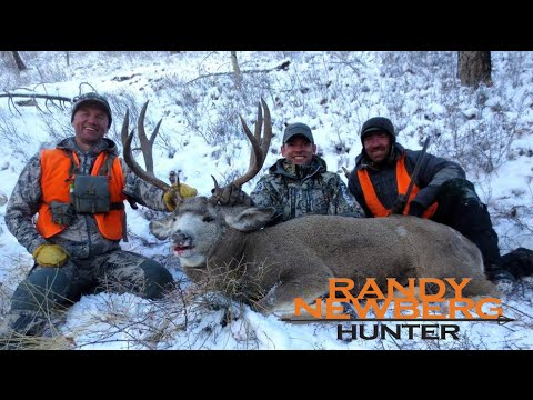 Hunting Montana Mule Deer Rut With Randy Newberg (FT S3 E6)
