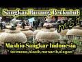 Sangkar Burung Perkutut     Mashio Shangkar Indonesia Msi  Mp3 - Mp4 Download