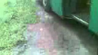сняли номера по дороге на юг трасса м4 автобус от агенства КОНТУР Тула 19 08 2011(, 2011-09-06T08:10:06.000Z)