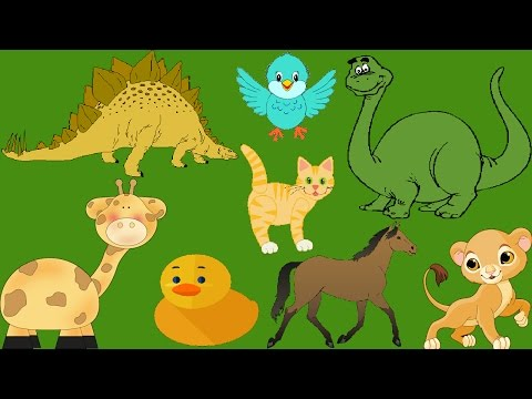 😀😍👶ANIMALS! EDUCATING FUN VIDEOS FOR KIDS! DINOSAUR,HORSE,WHALE & MORE! LONG VIDEOS FOR CHILDREN!