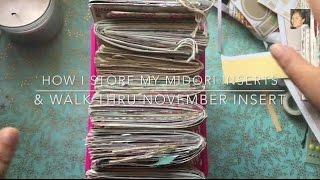 Midori Storage & November Midori Travelers Notebook Insert