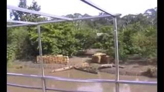 SOMBRAS EN LA AMAZONIA PERU