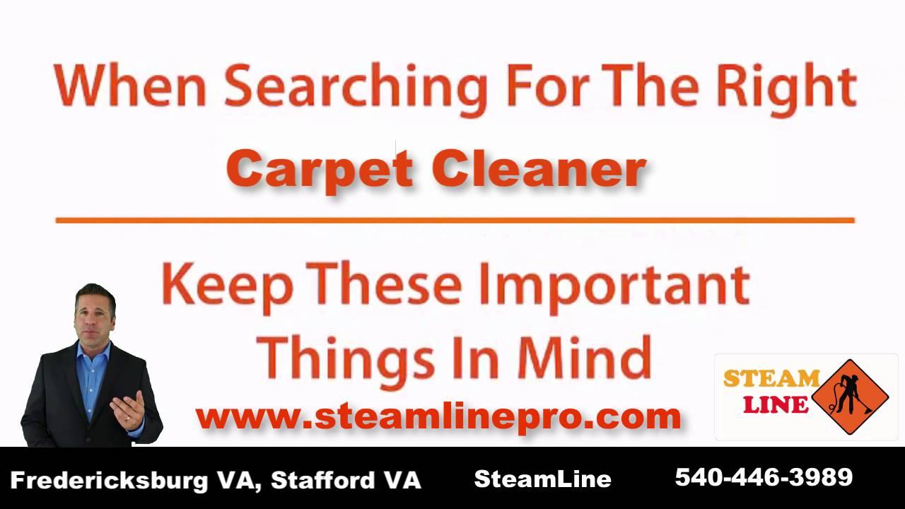 Professional carpet cleaner. SteamLine