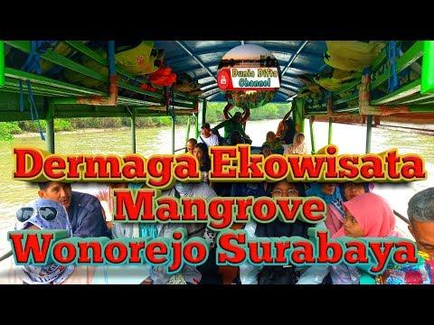 dermaga-ekowisata-mangrove-wonorejo-surabaya