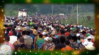 La Rosa de Guadalupe: Misael huye de la Mara en la caravana migrante | Es tiempo de amor 1