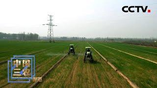 国家粮食和物资储备局:夏粮开局好,收购准备早 | CCTV「中国三农报道」20210401 - YouTube