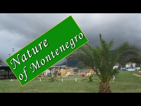 Rain and Thunderstorm in Montenegro