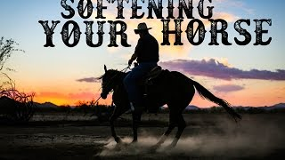 Softening Your Horse!: The Philosophy