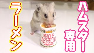 ハムスターにカップヌードル作ってあげたら超可愛い!!Making a tiny instant noodle for my hamster!