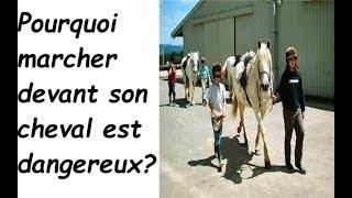 pourquoi il est dangereux de marcher devant son cheval? Qu'est ce que la Science nous conseille?